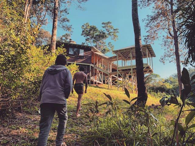 Byron Bay Hinterland Eco Retreat