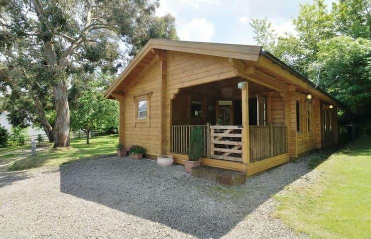 Parc y Pant log cabin