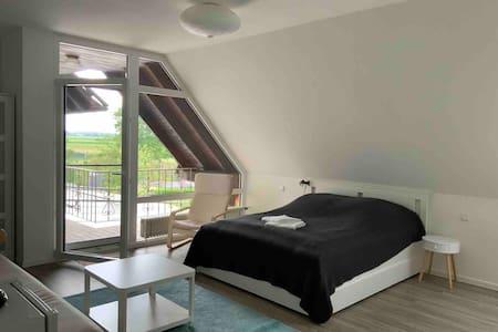 Großes Gästezimmer mit Balkon und privatem Bad