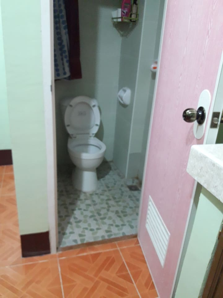 This is the bathroom with  a shower and the toilet.