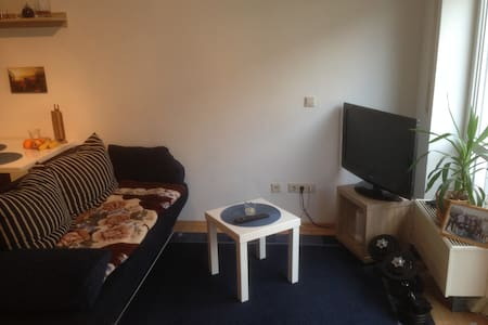 Quiet, comfortable room close to city center/park - Dresden
