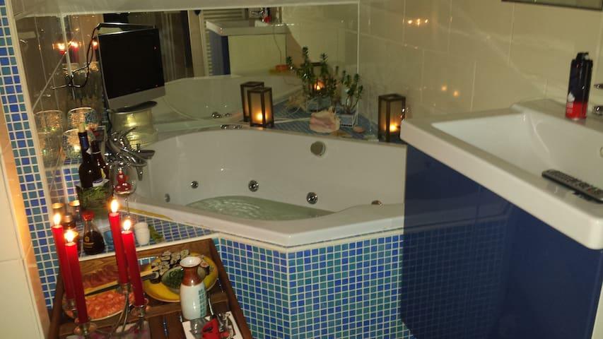 Romantic apartment in residential area of Voorburg