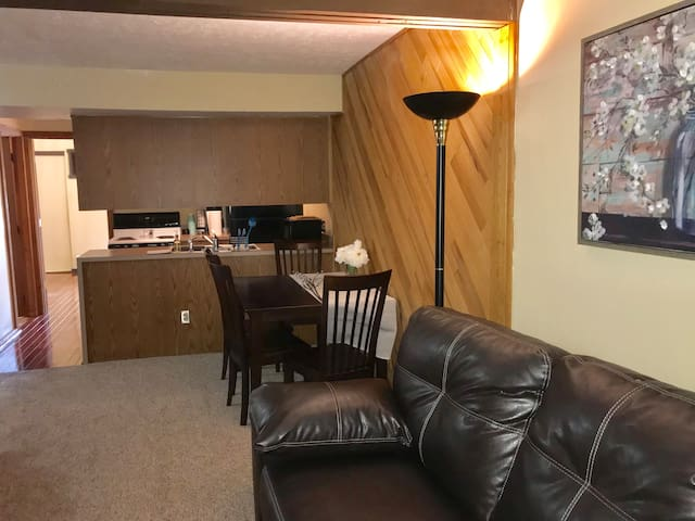 Newly Renovated, cozy 2 bed 2 bath - Akron, Ohio