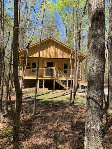Squirrels nest! Brand new cabin!