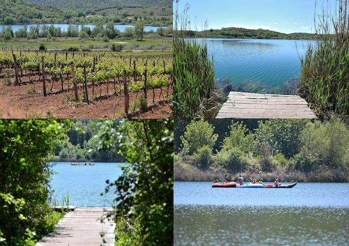 8 Km from the village there is the lake of Accesa (Lago dell'Accesa)! Ideal for Relax yourself keeping in contact with the nature but also for those who love sports! Lot of vineyards in the immediate surroundings!
