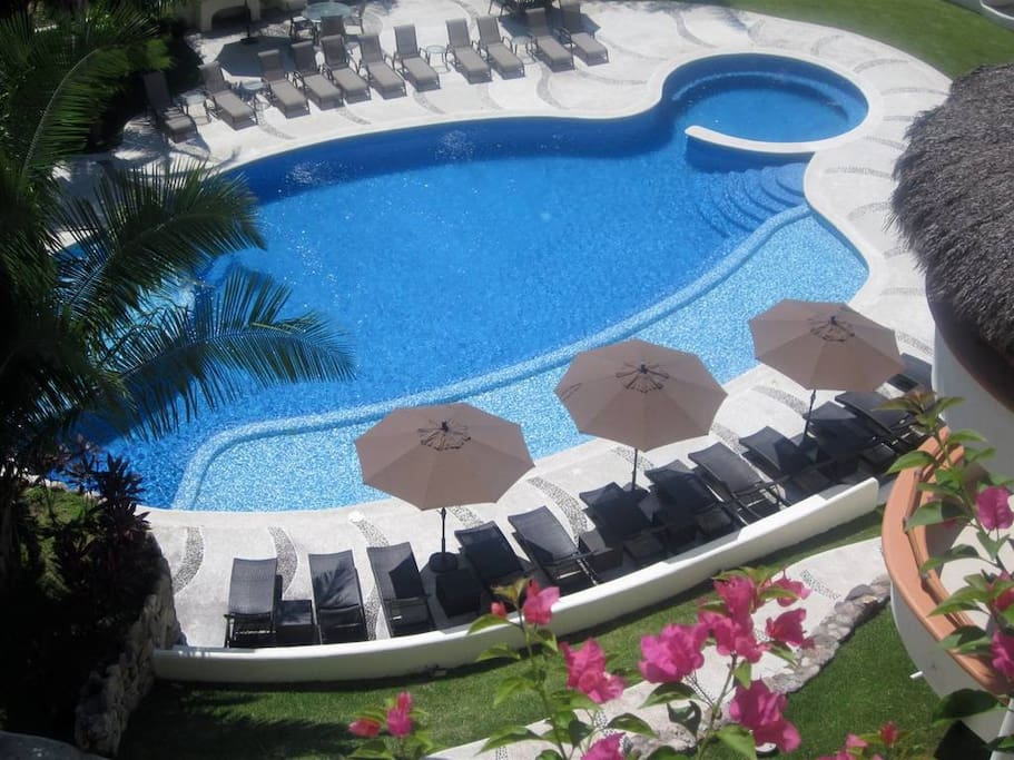 Pool with bbq, bathromm, sunbathing lounges and palapa