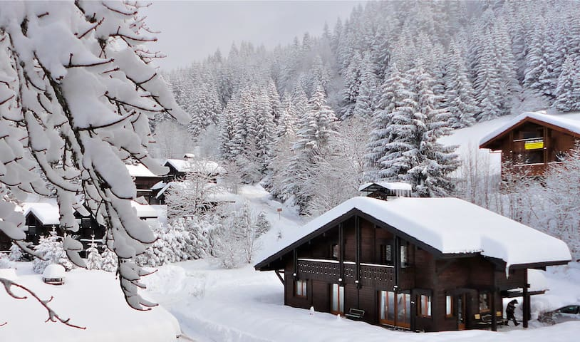 Beautiful 5 bedroom Chalet Julienne in French Alps