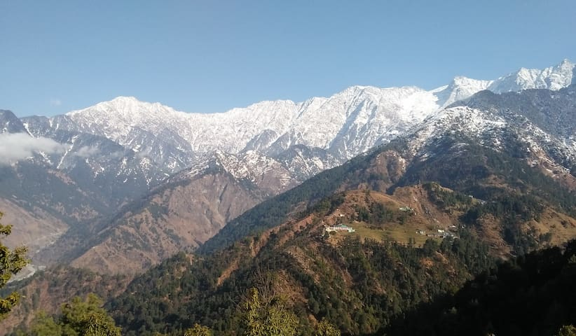 B1 Amazing Mountain View- 15 m drive to Mcleodganj