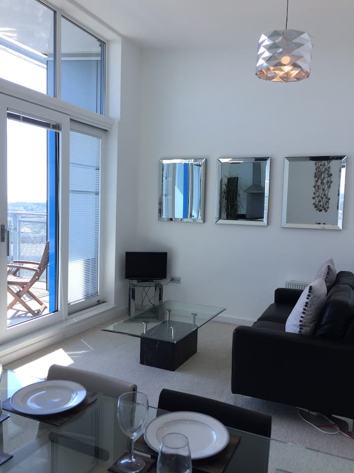 Penthouse Apartment with Free on-site Parking