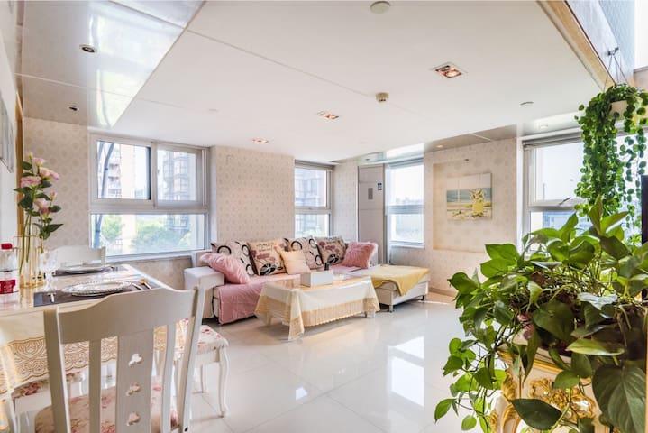 近一号线舒适宽敞的欧式风格100平两室一厅复试公寓,带喝下午茶的小飘窗 317