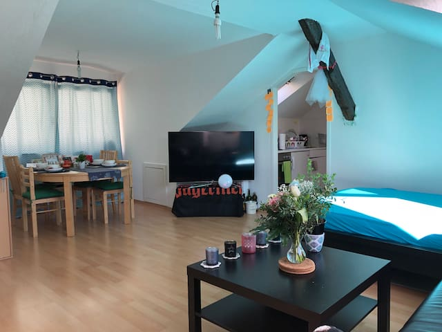 1.5 room cozy apartment in the city center