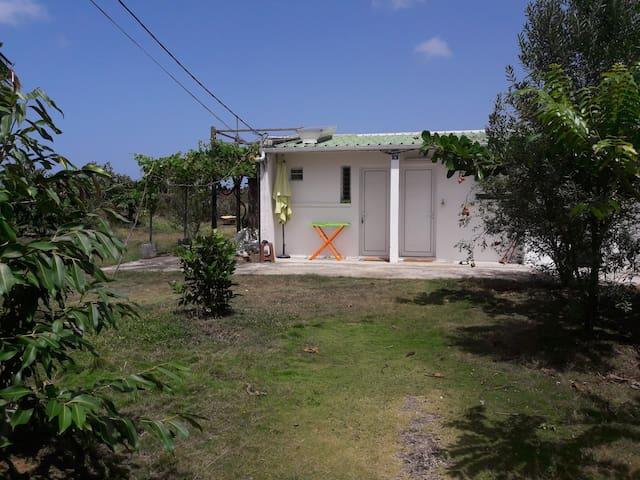 studio sur Anse Bertrand - GP - Diğer