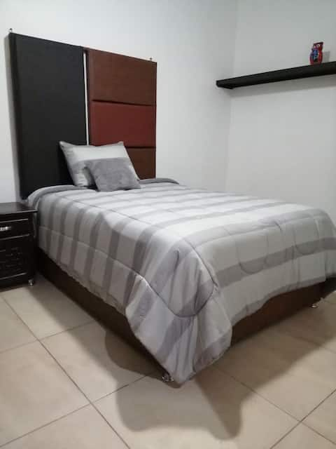 Furnished apartment in Leon