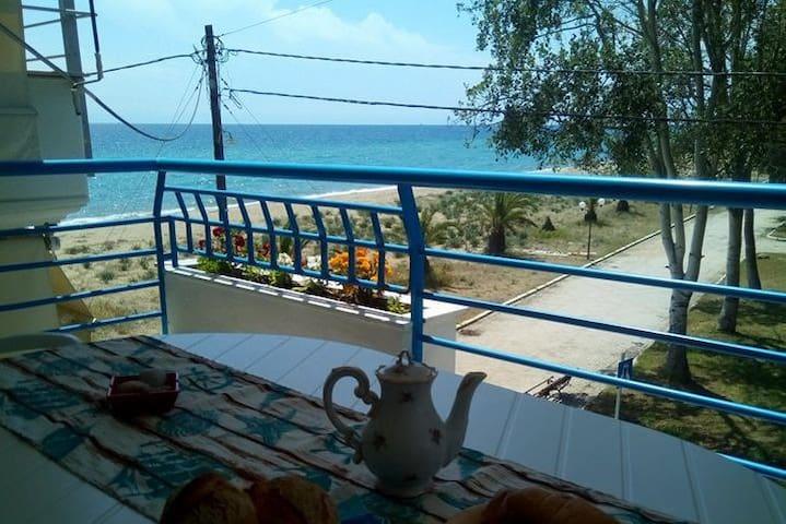 Μodern beach house- Flogita