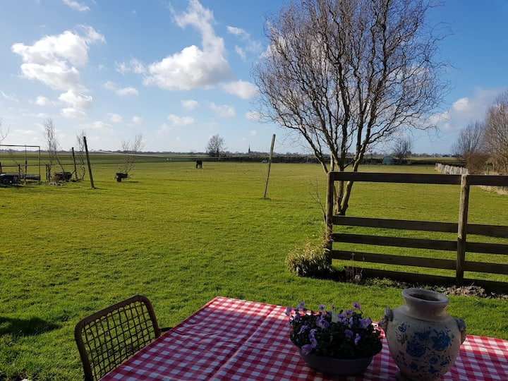 Studio with great view on the Beemster grasslands
