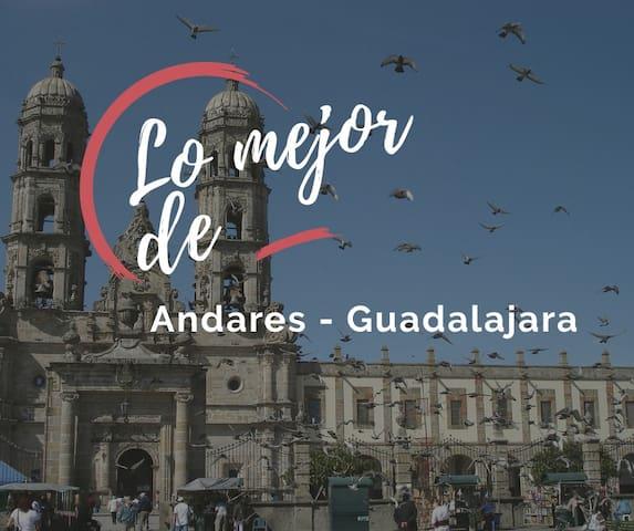 Guidebook for Andares-Guadalajara