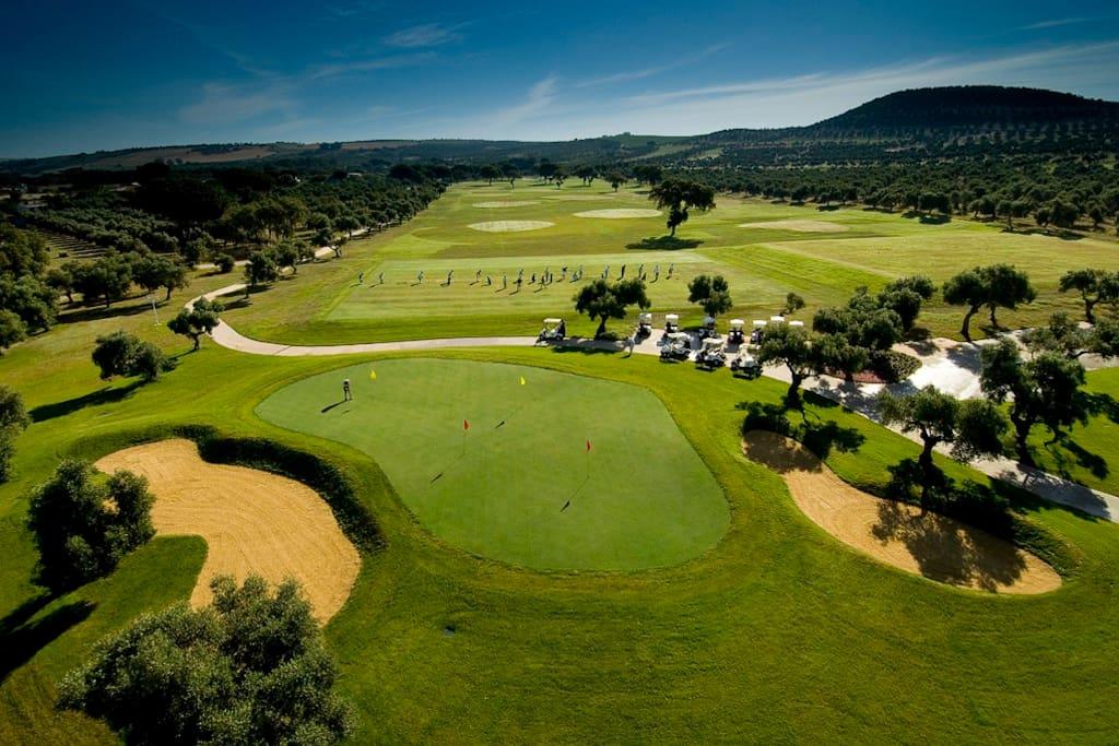 Excelentes campos de Golf, el más cercano a solo 5 min.
