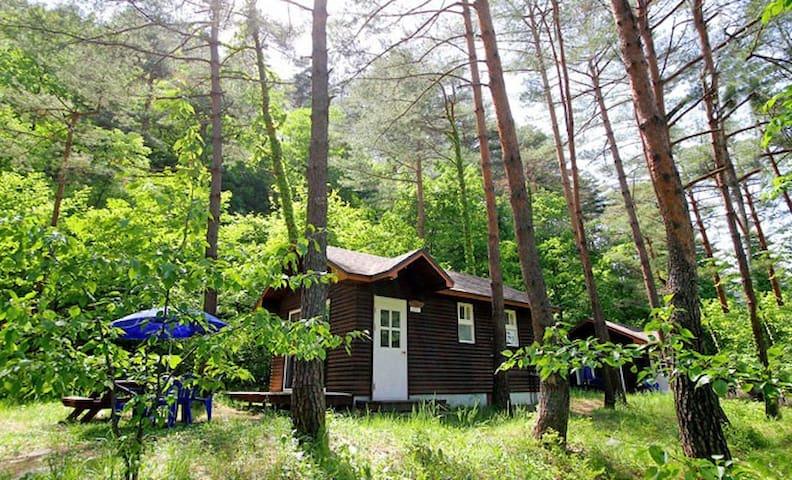 양양 숲속의집 - Hyeonbuk-myeon, Yangyang - Domek parterowy