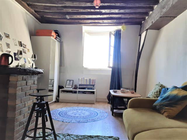 Charmant studio au cœur du marais,très bien équipé