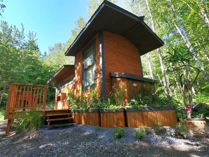 Superbe mini maison en milieux forestier