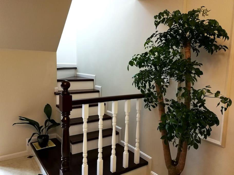 『枫墅』独立楼层楼梯入口