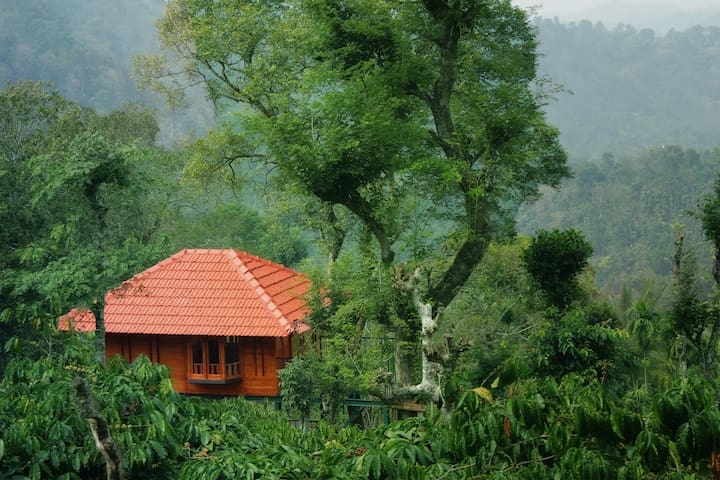 Marmalade Springs Wayanad - Tree House