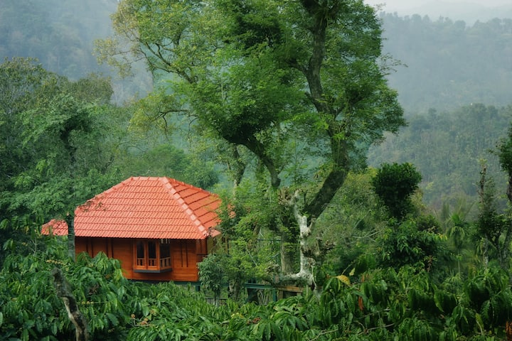 Marmalade Springs Wayanad - Tree House