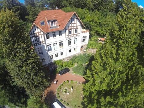 Apartment in der Schlossbergvilla