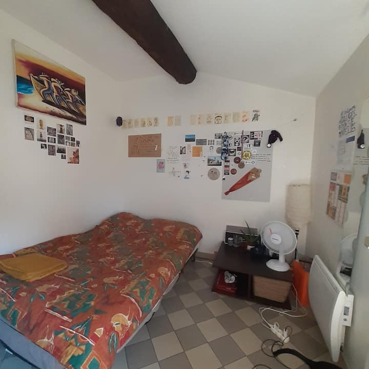 Location Chambre Plein Centre De Montpellier