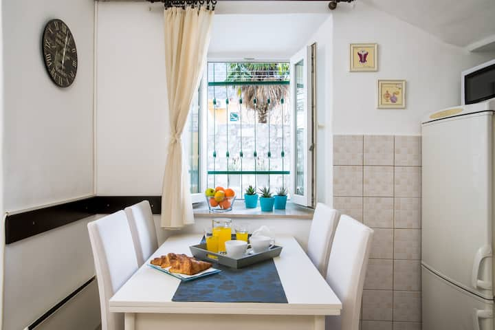Apartment ***Kala in Old Town