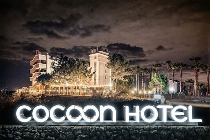 #애월 푸른 바다가 객실 가득한 코쿤(COCOON)호텔 #
