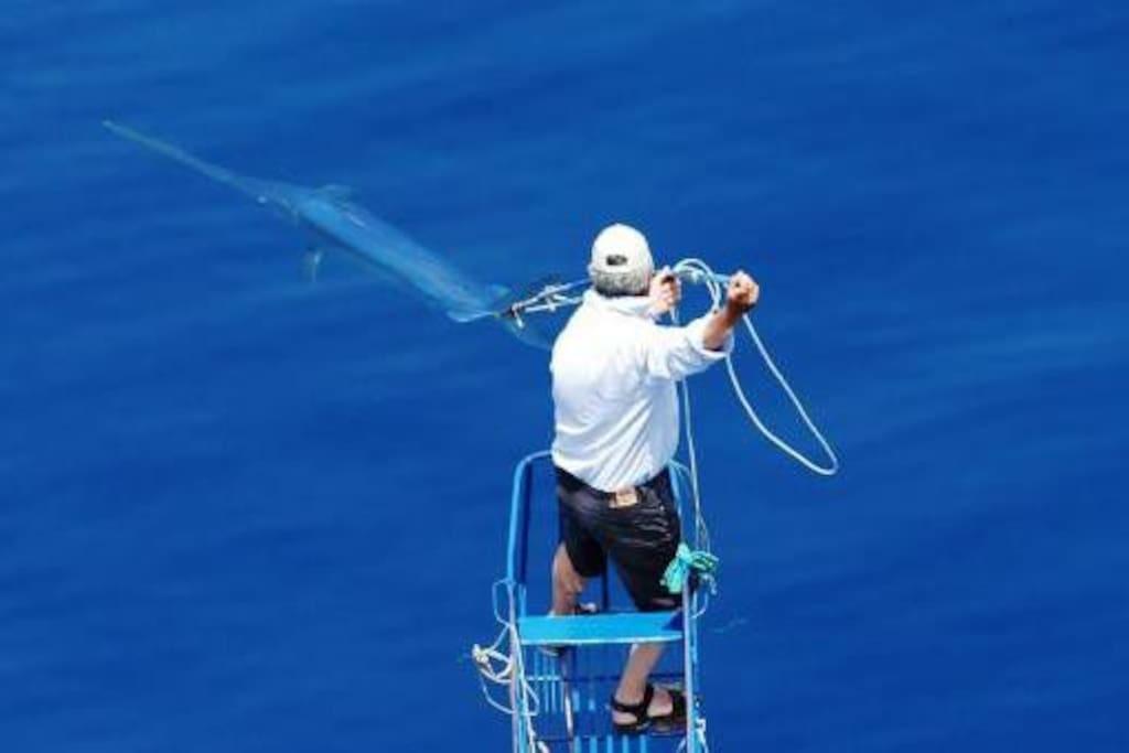 Battuta di pesca al pescespada
