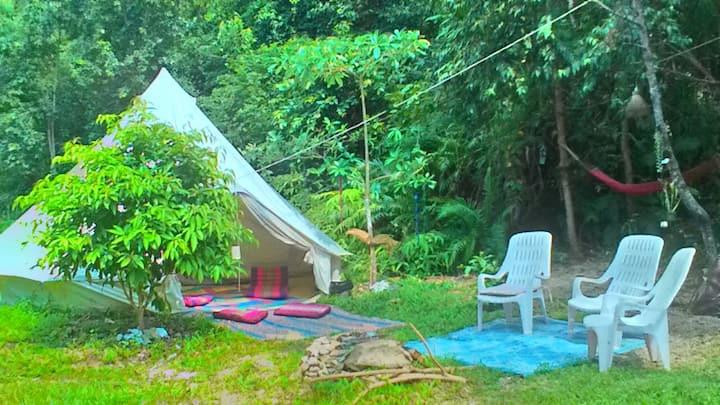 Tipee in Beautiful Solar Lit Jungle Hammock Garden