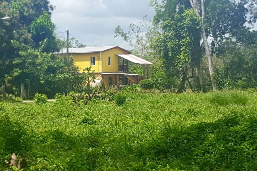 Quiet and lovely location where there's greenery (fruit trees) and Machal river behind property. Also very close to downtown San Ignacio where all the excitement is.