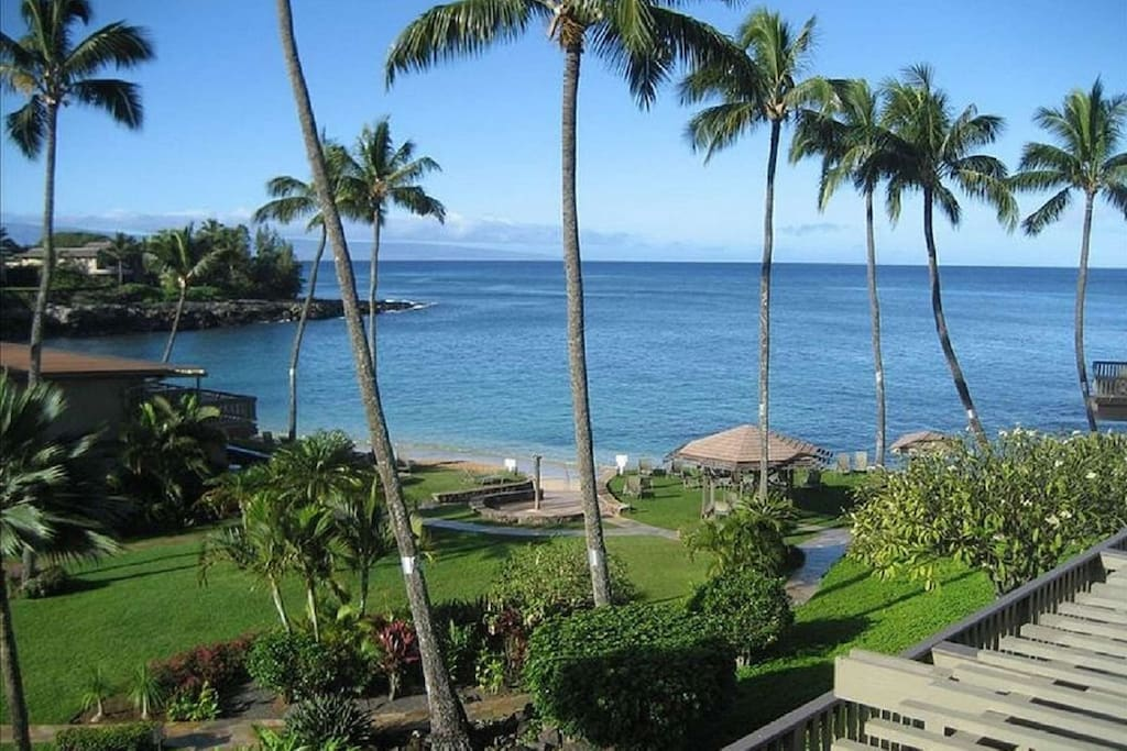 1/2 acres of tropical landscape - swim and snorkel in the beautiful Keoni Nu'i Bay