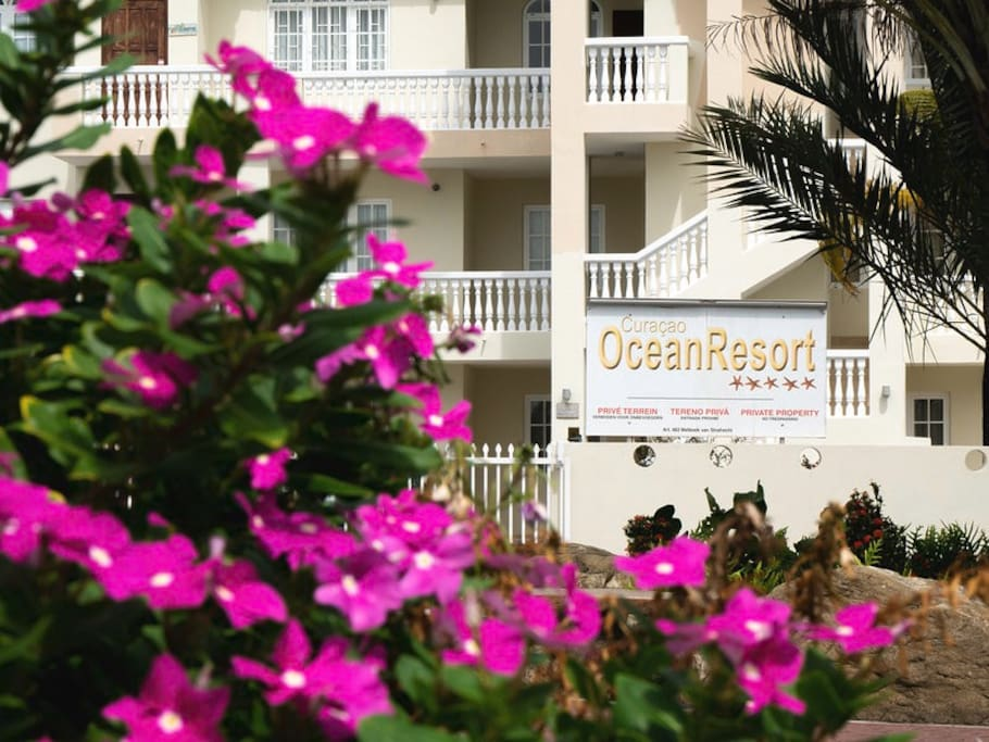 Entrance to Ocean Resort