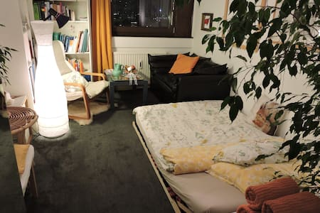 Cosy room with nice view of Vienna´s skyline - Vienna  - Appartement