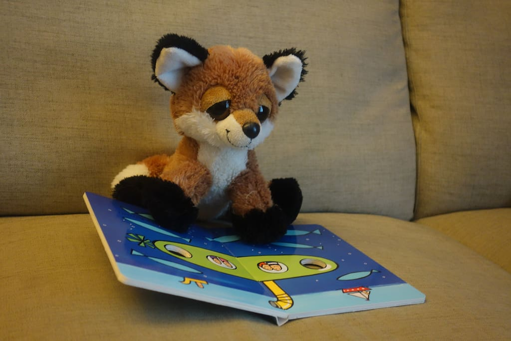 Mr. Fox, reading a book. Lots of toys and games for your family to share.