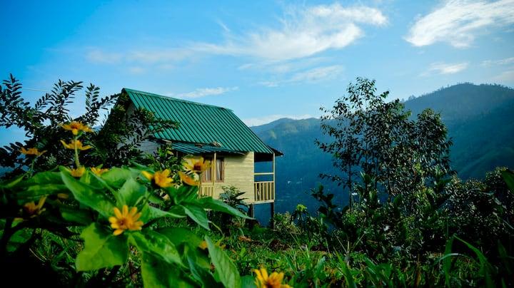 Cool Mount Resort