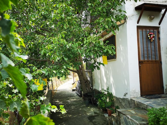 Anas Holiday house
