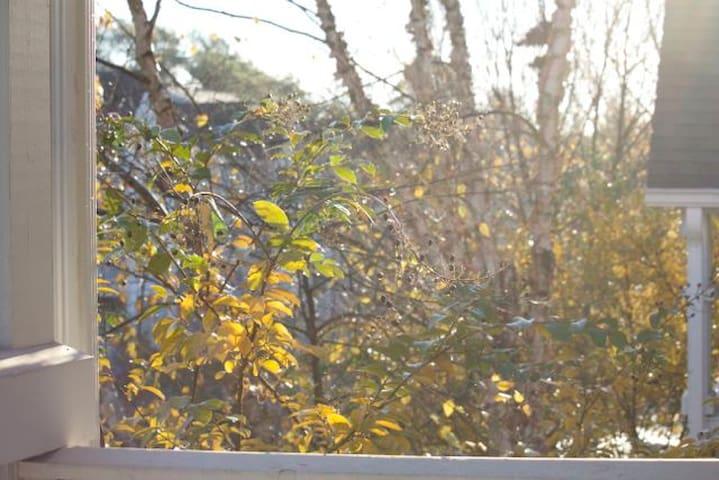 Quiet Sunlight Filled Mornings - Decatur - Apartamento