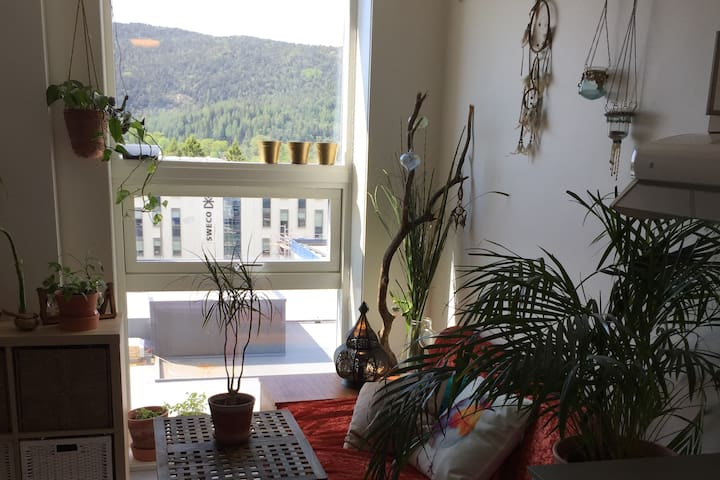 Cutest apartment/studio in Bergen! Mountain view!
