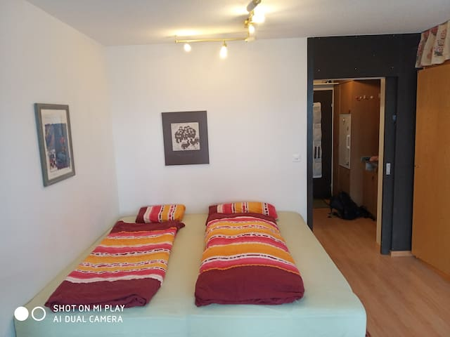 Airbnb Scuol Vacation Rentals Places To Stay Grisons