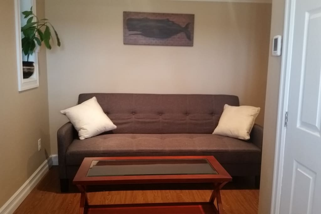 Living area with Futon