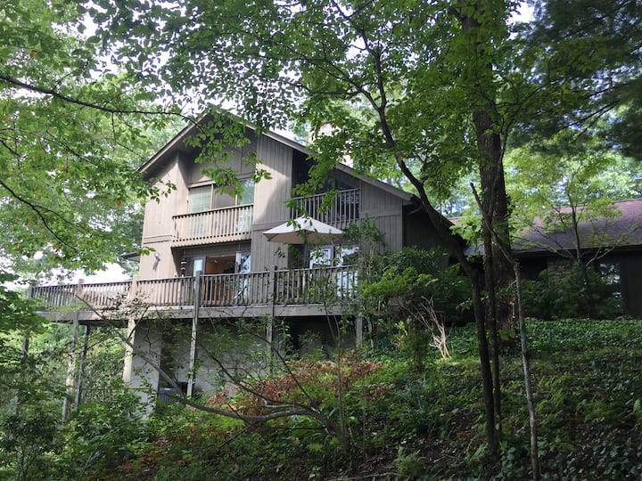 Mountaintop home with amazing views in Laurel Park