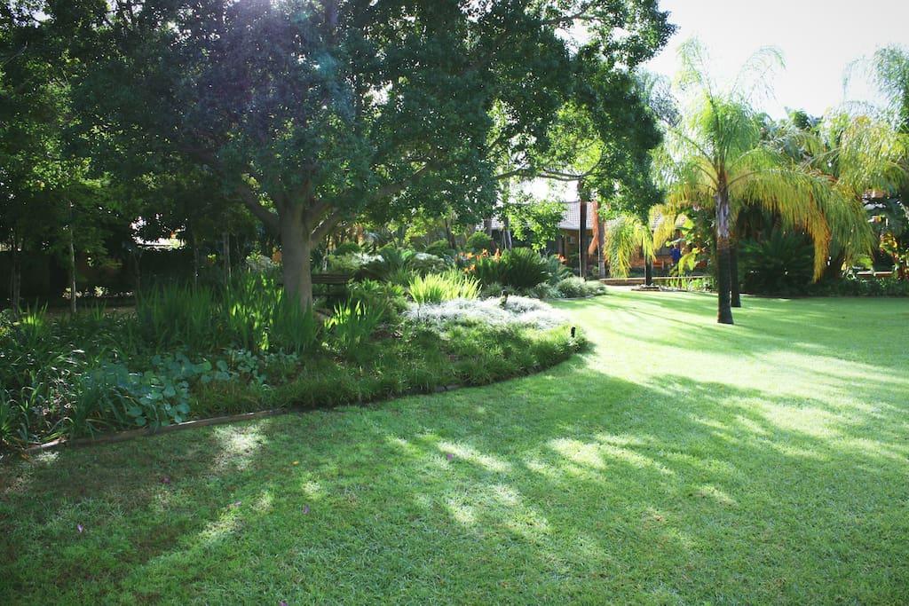 Lovely and Lush Garden