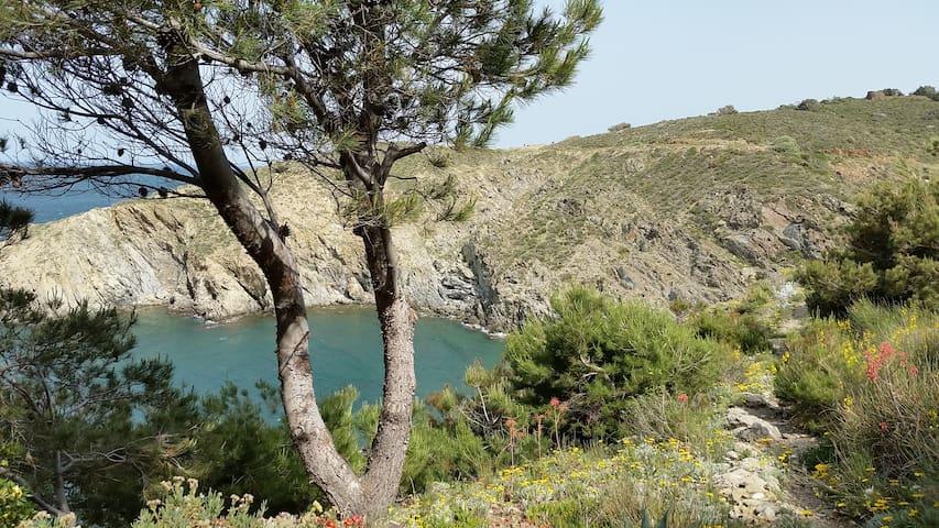 Studio 4 couchages belle vue sur mer - Banyuls-sur-Mer - Condomínio
