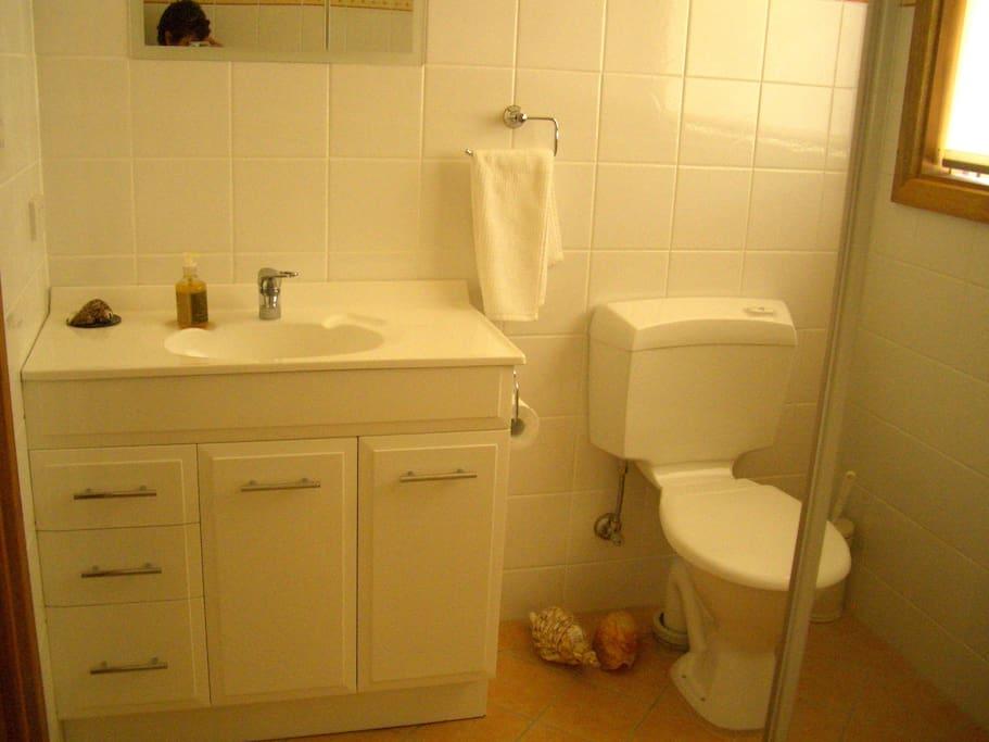Modern bathroom/Toilet with walk-in shower
