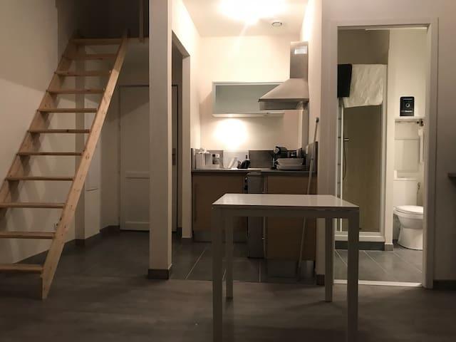 Appartement loft hyper centre grenoble
