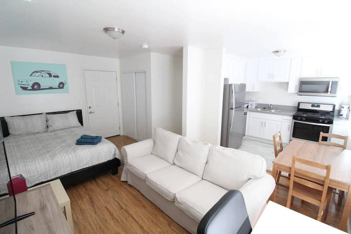 Spacious and Bright Studio Completely Renovated